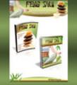 Feng Shui Minisite + Plr Ebook.